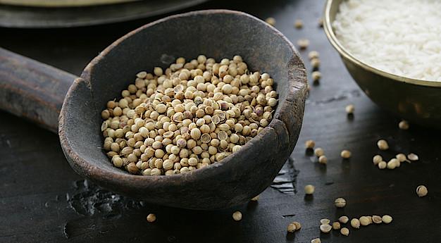 Una imagen del ingrediente Semillas de coriandro (cilantro)